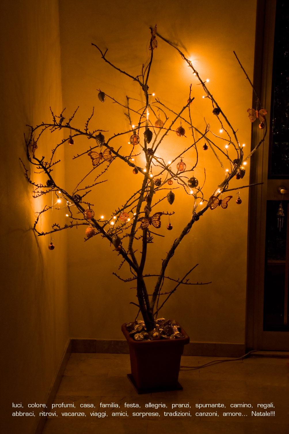 Il colore della curcuma arriva 2011 - Rami decorativi natalizi ...
