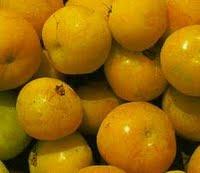 Cagaita - fruto