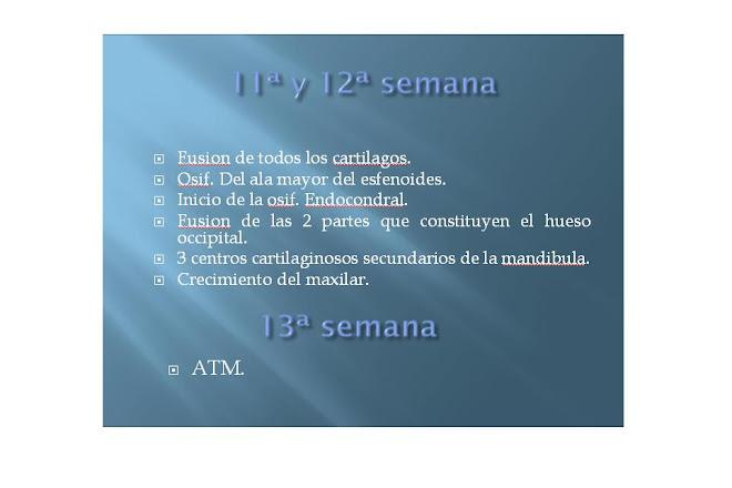 11va, 12va y 13va SEMANA