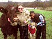 Photo of students with a cow and sheep