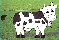 vaca hosltein