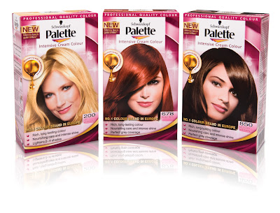 Schwarzkopf Palette Intensive Cream Permanent Hair Colour 200  Rachael Edwards
