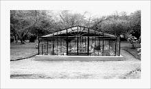 Jardin Botanico InvernaderoI