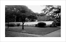 Jardin Botanico 5.45hs