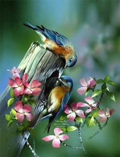 http://3.bp.blogspot.com/_5nYtgKVswRM/SowzOw3hU7I/AAAAAAAACG8/Wn_S4PsnvQw/s320/bluebirds-spring-joy.jpg