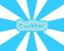 Perfil de los usuarios de Twitter