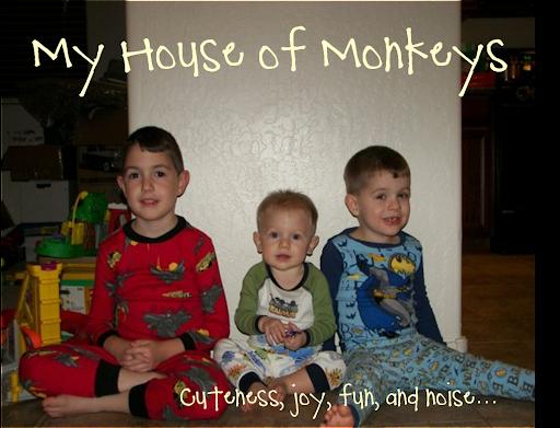 My House of Monkeys