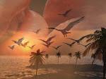 Poetas um voo livre -  Sandra Andrade
