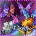 Conheça este blog encantador