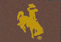 Brown flag with yellow University of Wyoming cowboy logo.