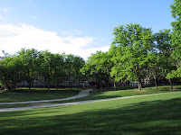Green lawn and trees on the University of Utah campus.