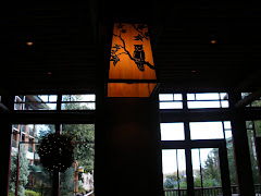 Owl Lantern at Wilderness Lodge