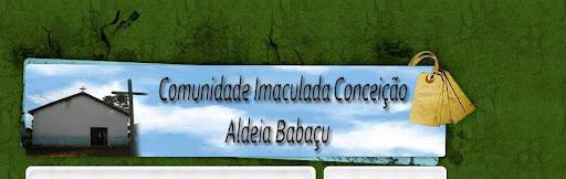 Campão Babaçu