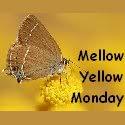 Mellow Yellow Monday