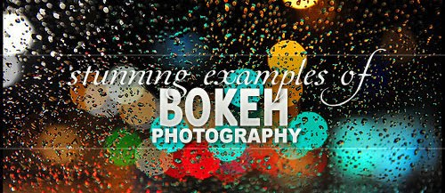 Stunning+Examples+of+Bokeh+Photography Stunning Examples of Bokeh Photography