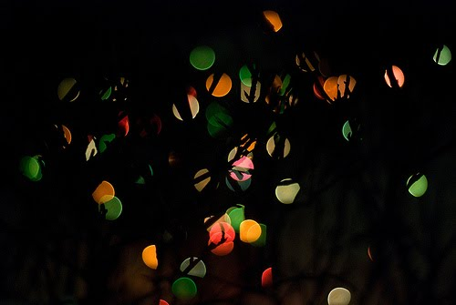 Someone%27s+Christmas+lights+ +perminna Stunning Examples of Bokeh Photography