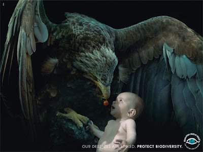 foundati Astonishing Animal Advertisements Creating Awareness