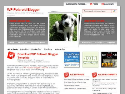 WP Polaroid Blogger template
