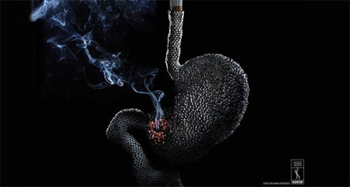 Cigarettes+Stomach 65 Creative Anti Smoking Ad Campaigns Dedicated to World No Tobacco Day