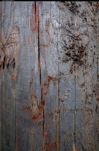 Dark wood texture by enframed 80+ Free High Quality Wooden Texture Packs