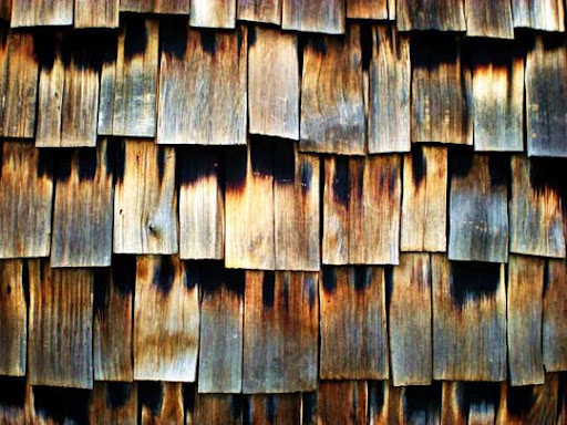 cedar texture stock by redwolf518 80+ Free High Quality Wooden Texture Packs