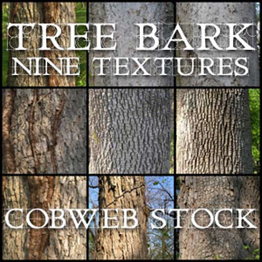 Wood   Bark Texture Pack by Cobweb stock 80+ Free High Quality Wooden Texture Packs