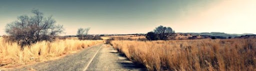 Bush Panorama by 3hanphoto Stunning Horizontal Panoramic Shots | Photography Inspiration