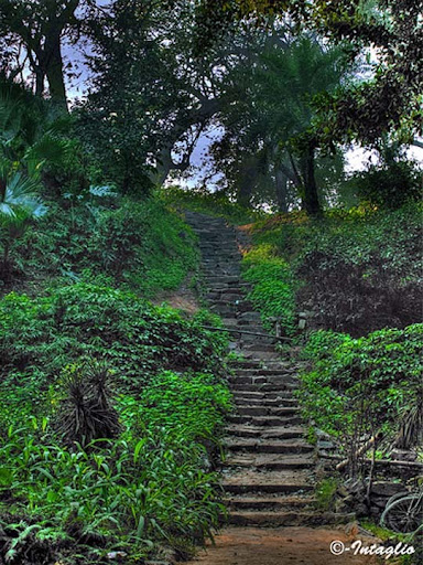 Jinnah+Garden The Beauty of Pakistan: 70 Amazing Photographs