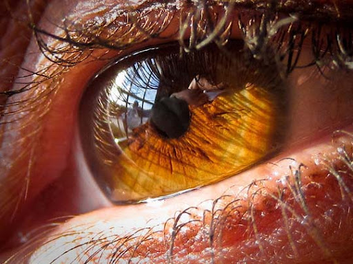 Eye+of+M 30+ Mesmerising Macro Photos of the Human Eye | Photography Inspiration
