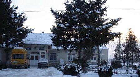Primaria comunei Rogova