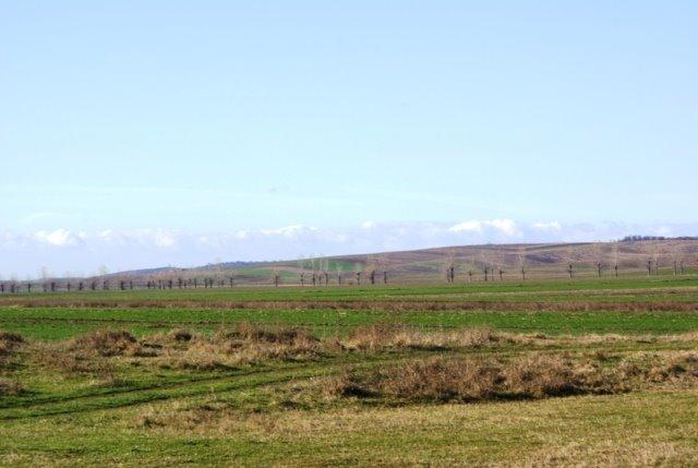 Cimpia si dealurile Rogovei