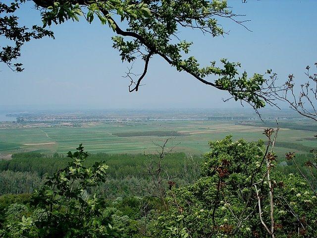 Vedere din dealul Starmina spre Dunare
