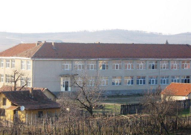 Scoala generala din comuna Rogova