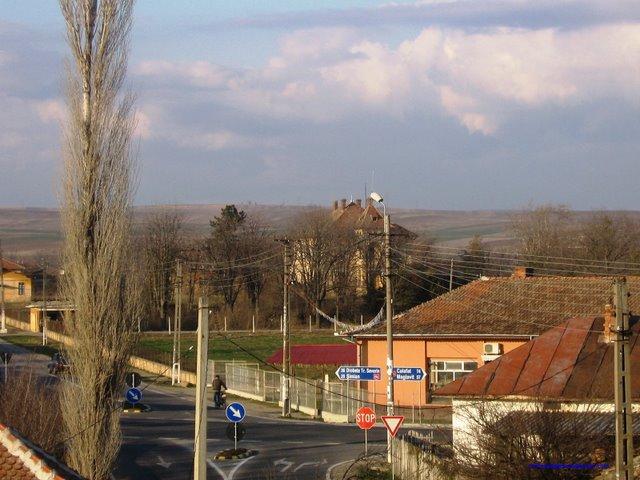Vedere din centrul comunei Rogova