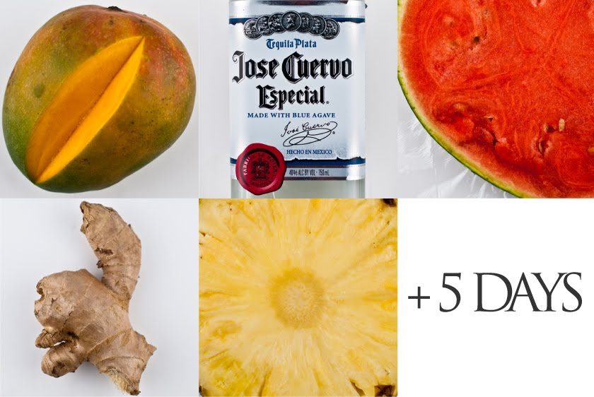 Tropical Fruit-Infused Tequila   Cooking With Hoover