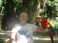 Janice's bud the Macaw