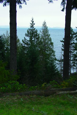 View towards mainland from Saturna Island.