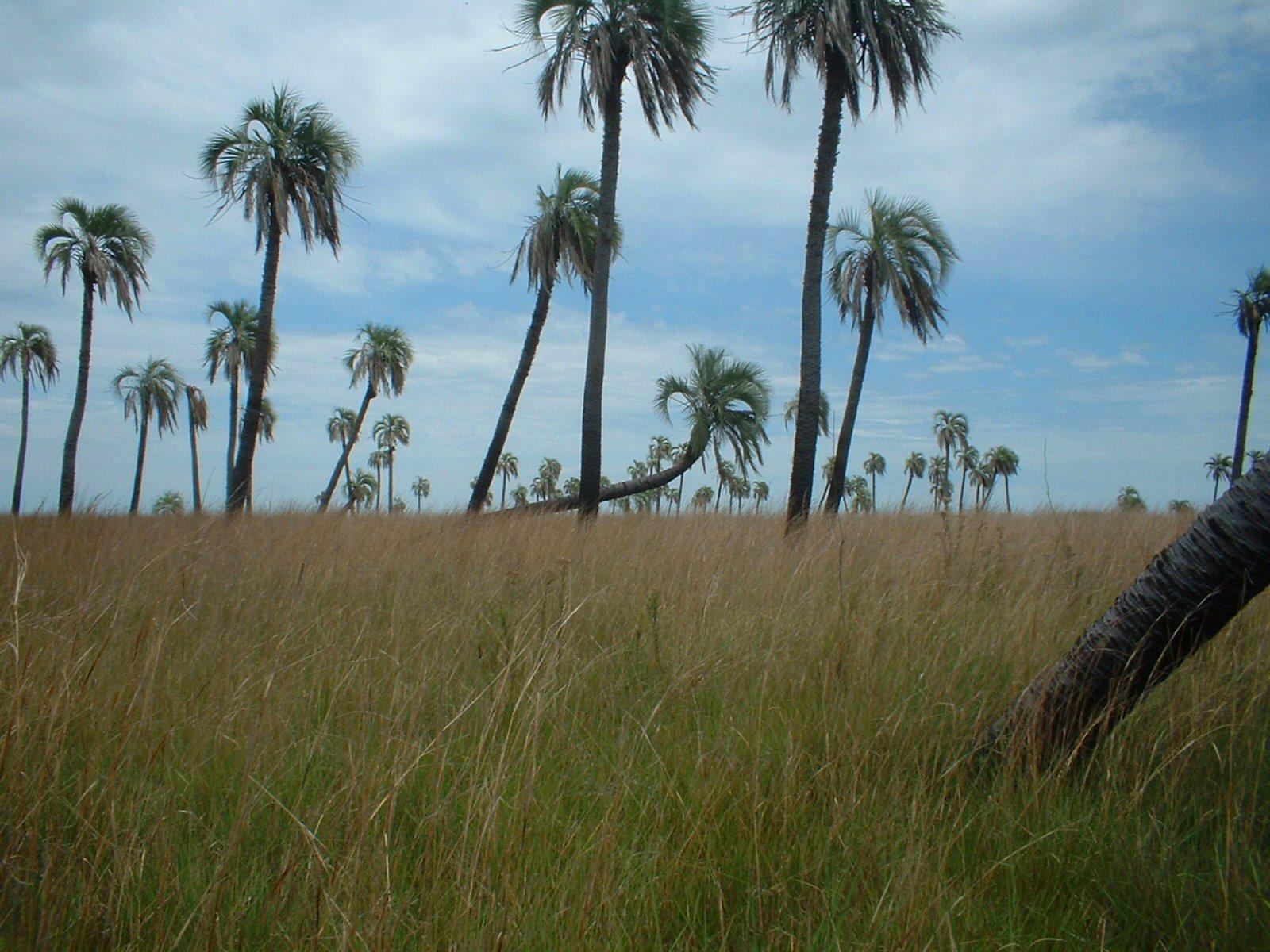 Hermosos Paisajes de Argentina en un Solo Post [MEGAPOST]