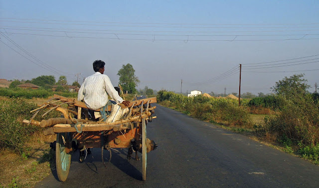 man on bullock cart