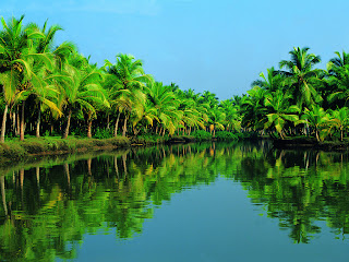 Backwaters of Kerala, most famous in Kerala