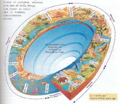 Eras Geologicas Pangea Eras Geol Gicas