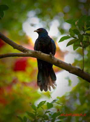 Photo from : http://www.cs.columbia.edu