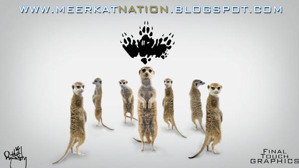 MEERKAT NATION