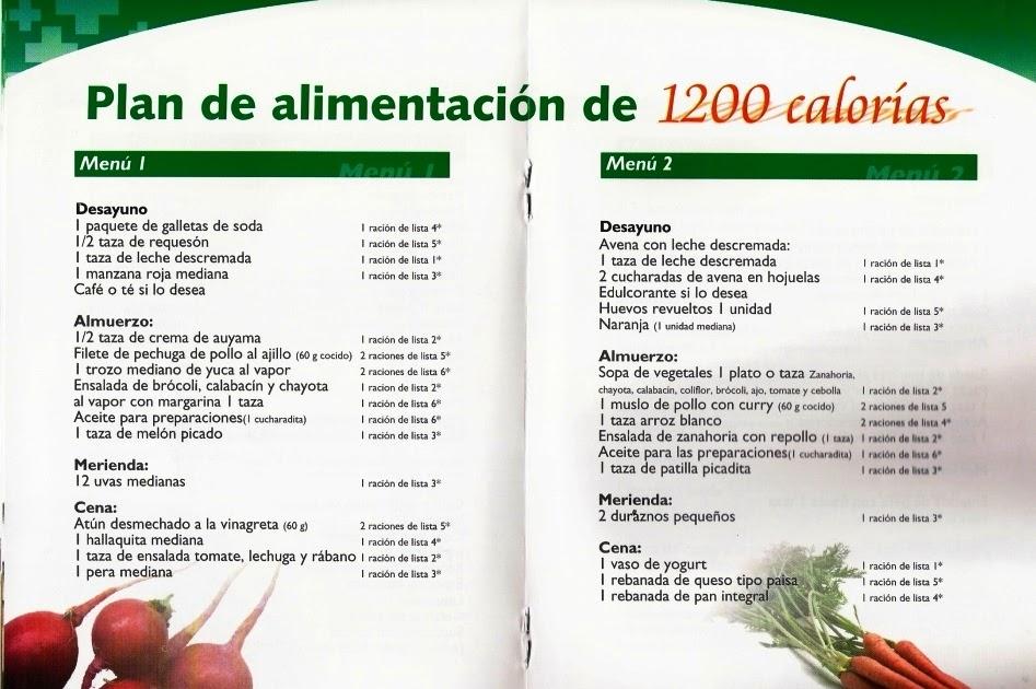 RECETAS SANAS Y SABROSAS PARA DIABÉTICOS: Plan de