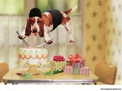 happy birthday funny dogs - photo #8