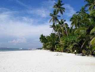 Alona Tropical Beach Resort - Bohol, Philippines