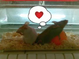 My cute mice..:)