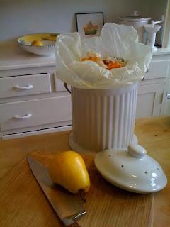 Counter-top compost bucket