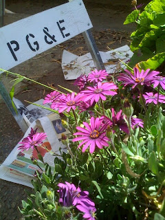 PG&E sign with purple flowers