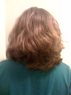 Hair on no 'poo Day 15